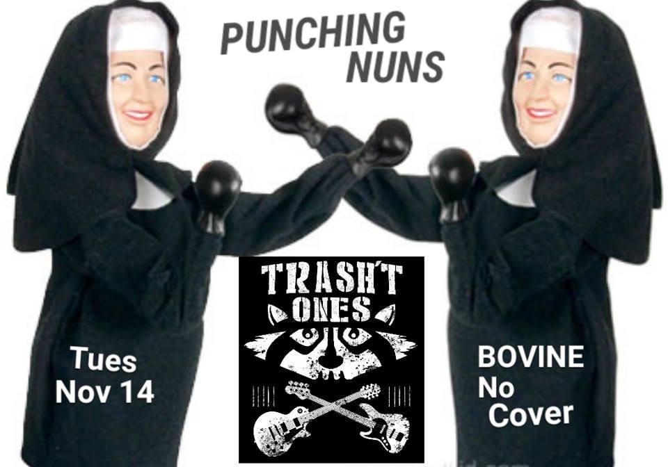 Punching Nuns